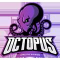Octopus vs Snake